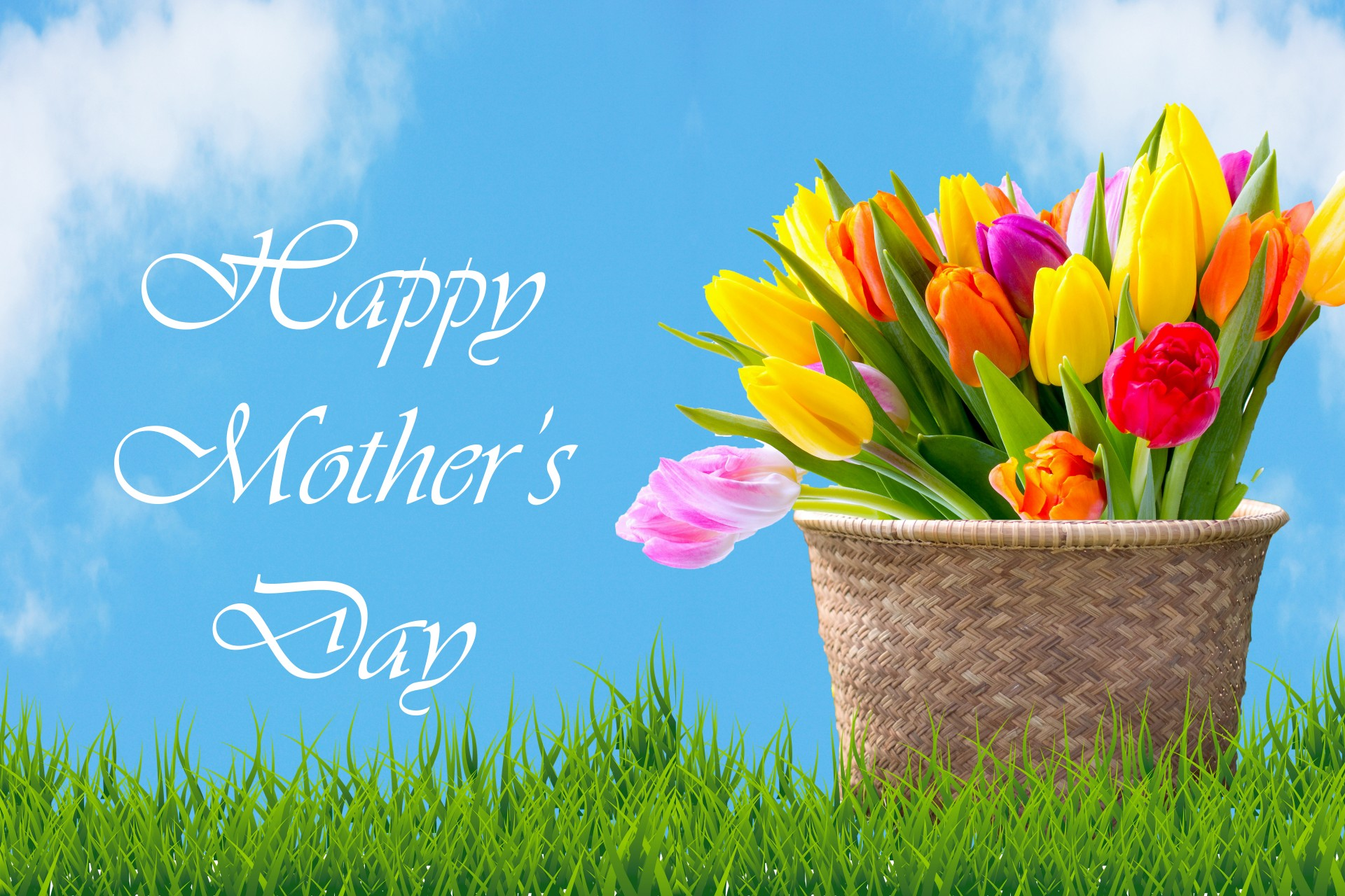 tulips-in-basket-mother-day-card