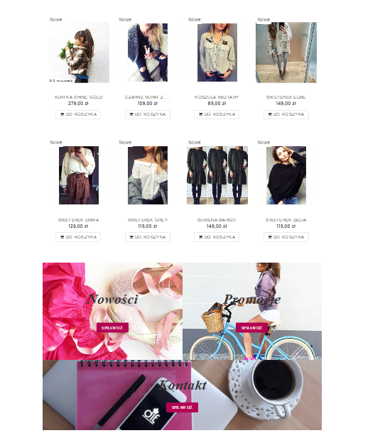 strona główna - produkty